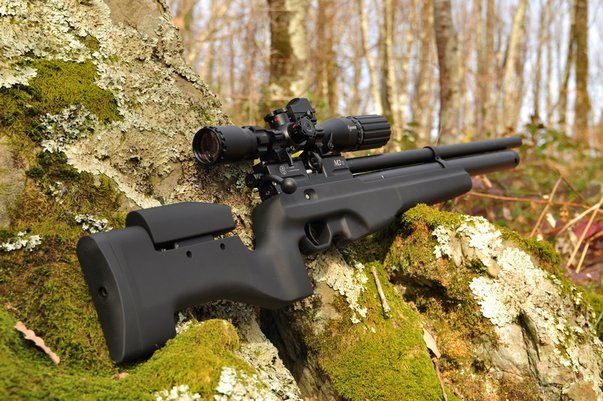как выглядит винтовка