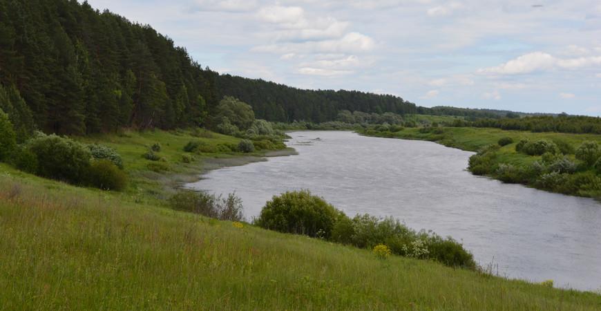 стояние на реке угре картина