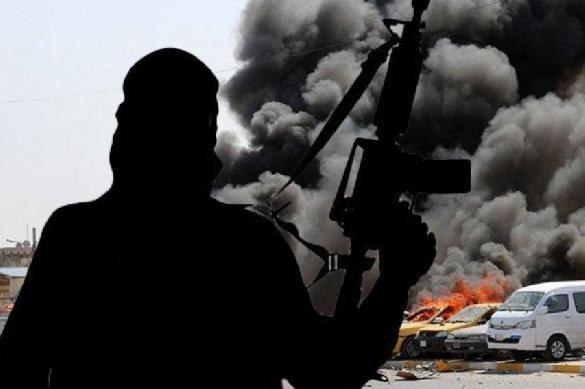 терроризм и его проявления