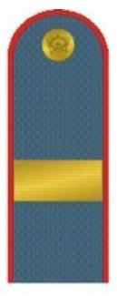 сержантские погоны расстояние