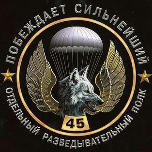 45 отдельная гвардейская бригада специального назначения вдв
