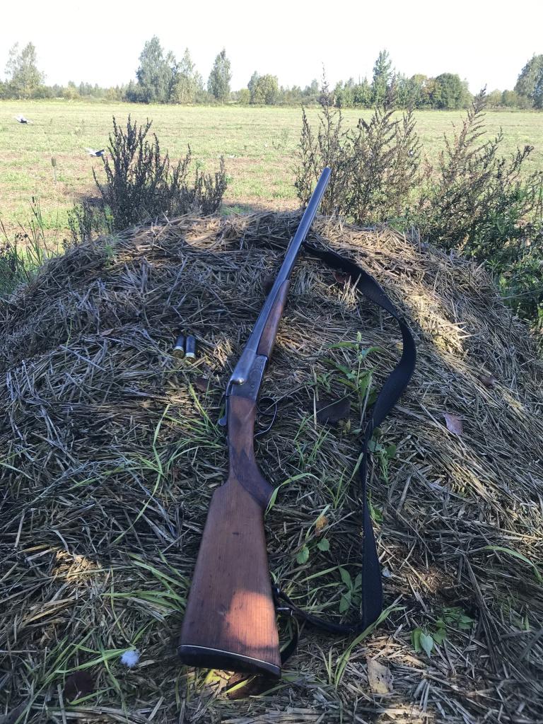 mp 43 ружье