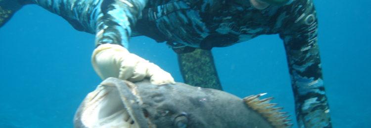 Борьба с крупной рыбой