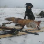 Хорошая была охота! И совсем не холодно!