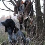Отличный охотник