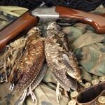 Ружье и два вальдшнепа