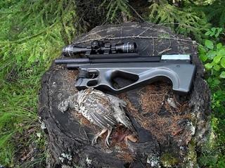 Пневматическое оружие и добытый рябчик
