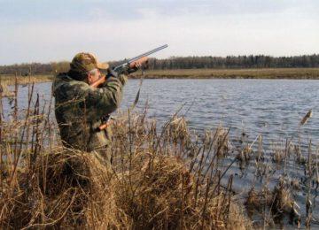 Весенний охотничий сезон 2015 на старте – правила охоты, сроки и на кого можно охотиться