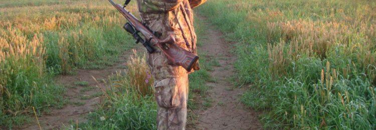 Охота на оленя скрадом и облавная смотреть видео онлайн