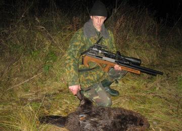 «Охота на бобров капканами на плотине» — смотреть видео онлайн