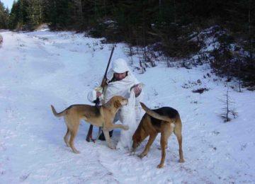 «Охота на зайца с гончими» — смотреть видео онлайн