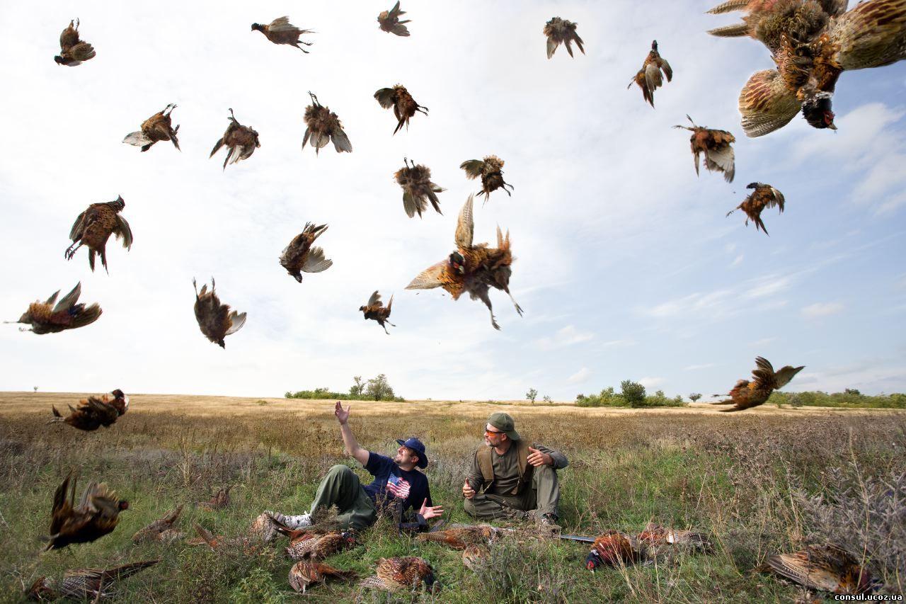 Удачная охота на гуся