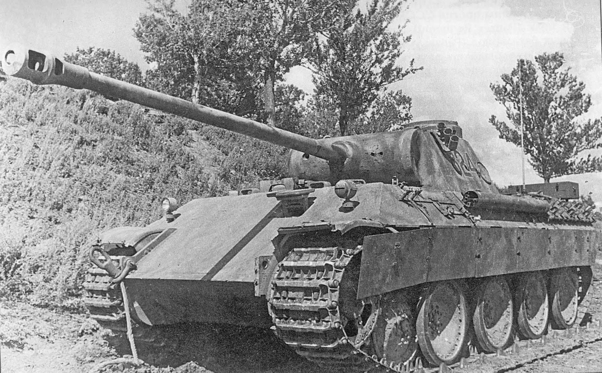 Пантера времен Второй Мировой