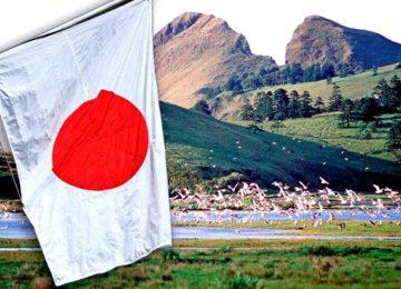 Японский флаг на фоне пейзажа