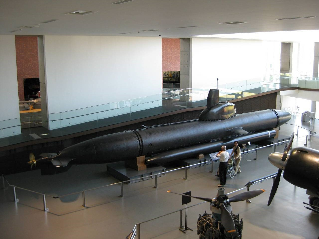 «Морской дракон» в музее