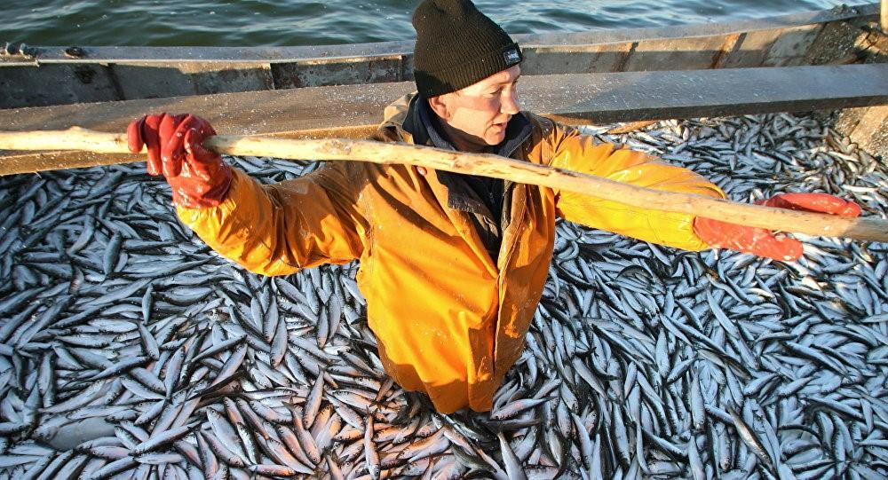 Эстонские рыбаки