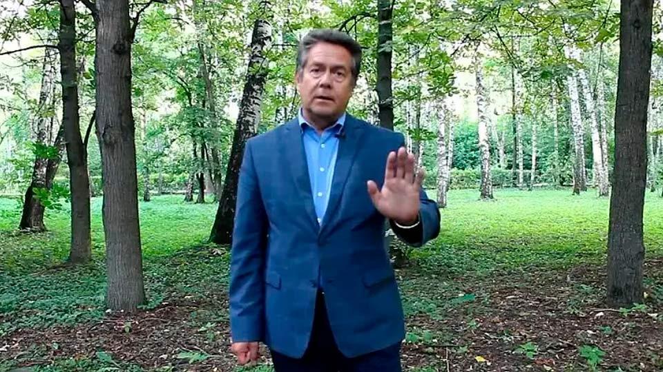Платошкин рассуждает об отмене пенсионной реформы