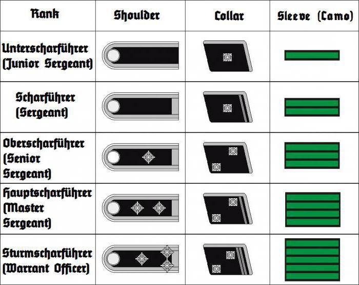 форма нацистской германии