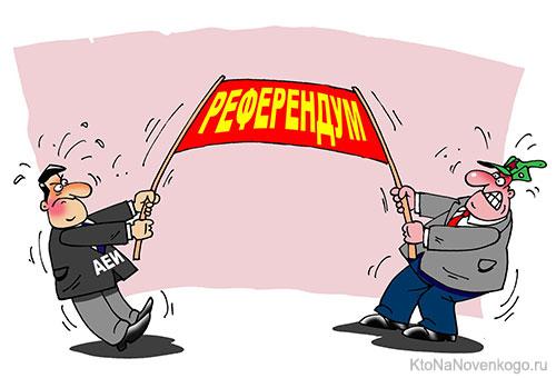 конституционный референдум