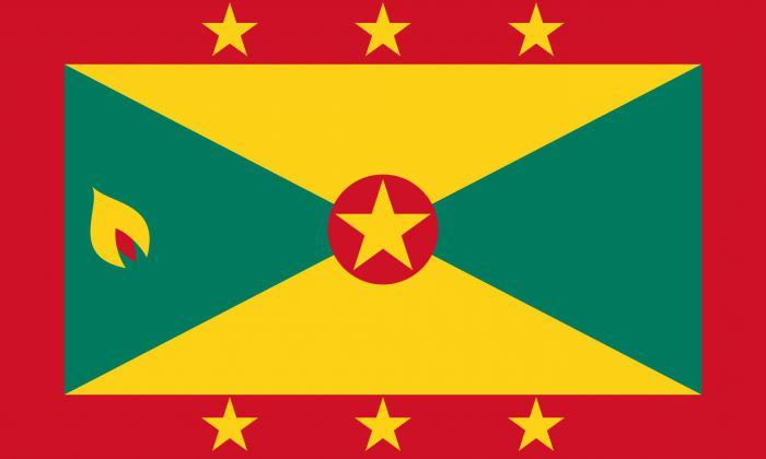 флаг красный синий желтый