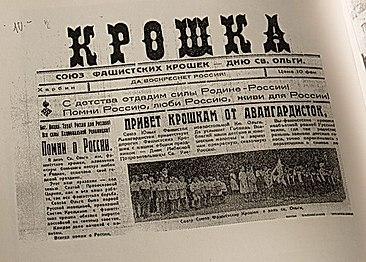 нацисты в россии в наше время