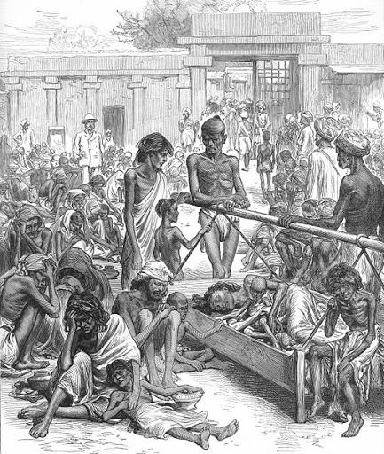 бенгальцы численность