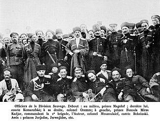 дикая дивизия во второй мировой