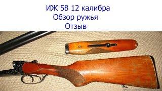 ружье иж 58 цена