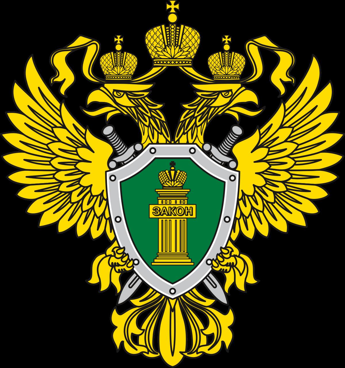 органы прокуратуры
