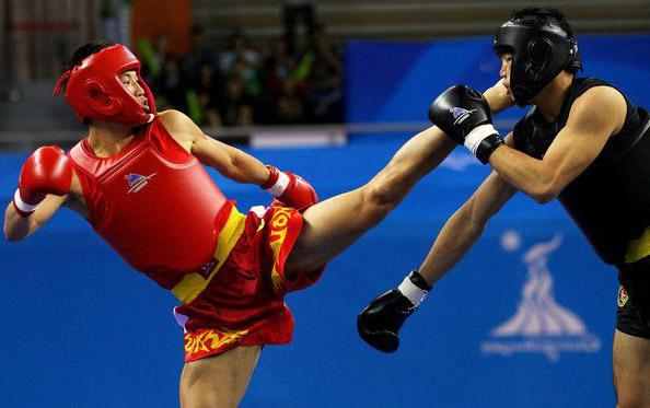 боевые искусства мира
