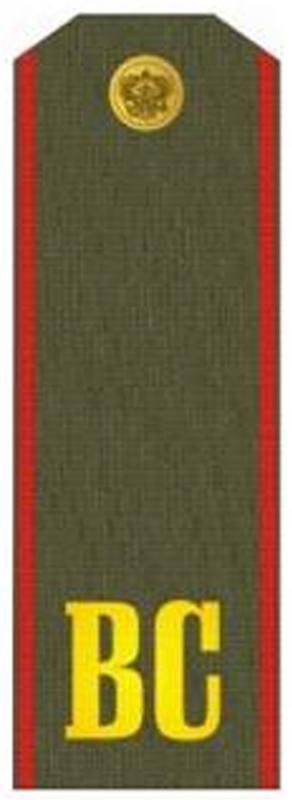 знаки различия военнослужащих