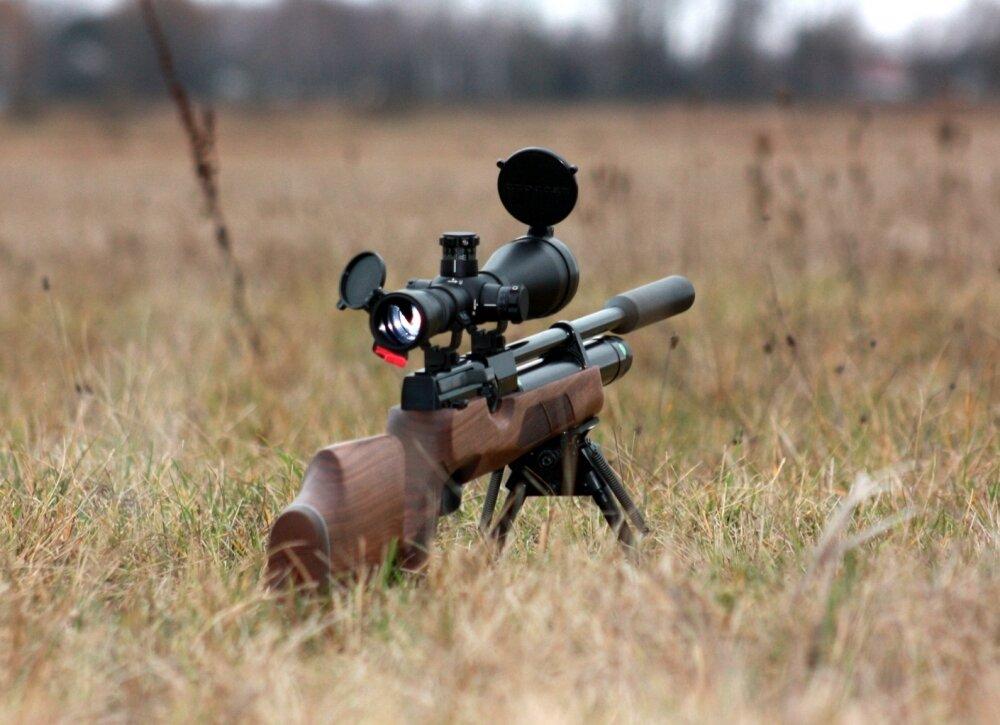 калибры охотничьих карабинов