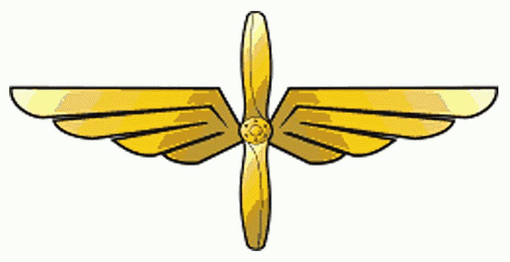 форма военных летчиков
