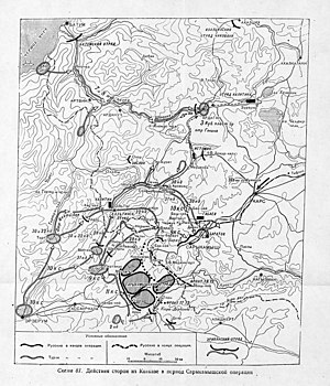 сарыкамышская операция 1914