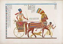 вс египта