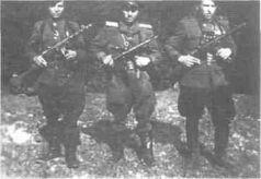 почему сталин депортировал чеченцев