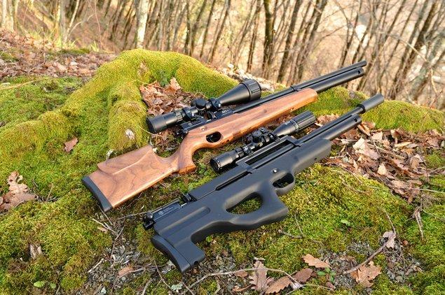 виды винтовок