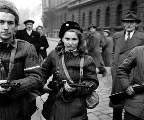 подавление русскими войсками революции в венгрии