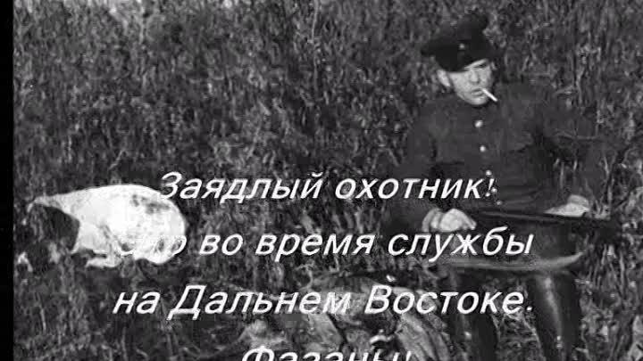 капитолина васильева википедия