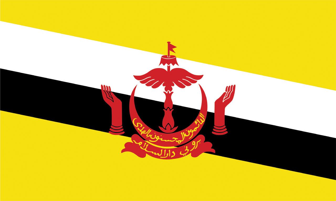 флаг красный синий красный чей
