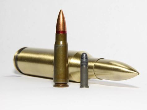 пуля фостера 410 калибра