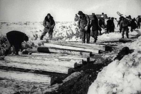 число жертв сталинских репрессий