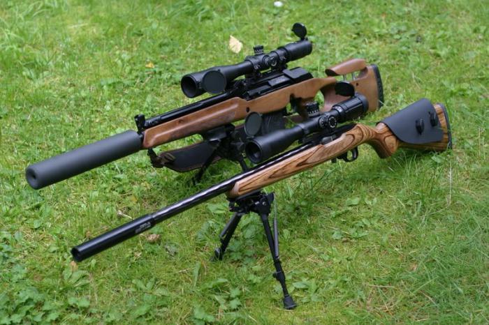 карабин оружие охотничий