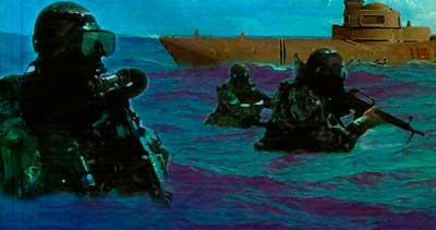 отряд морские котики