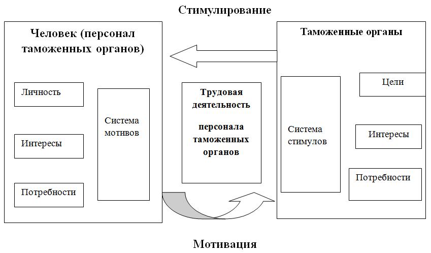 структура таможни рф