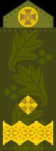 воинские звания в украине