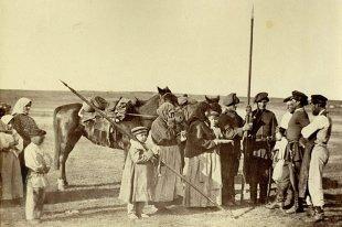 терские казаки история
