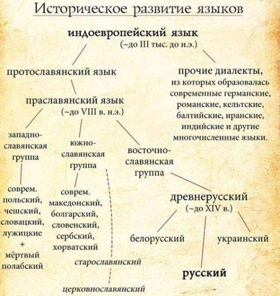 откуда произошли русские