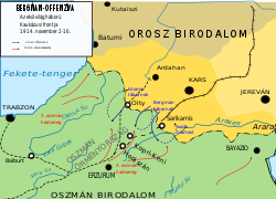 сарыкамышская операция русской армии