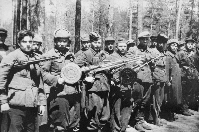 партизанское движение в годы вов